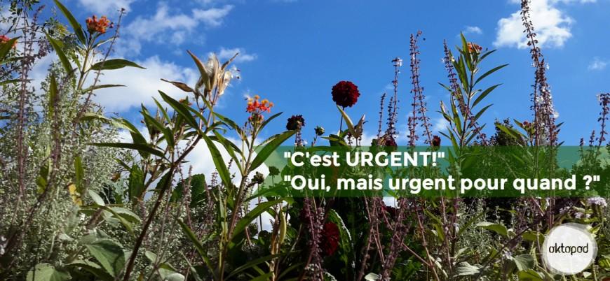 Oktopod_Gestion du temps_Urgent pour quand ?